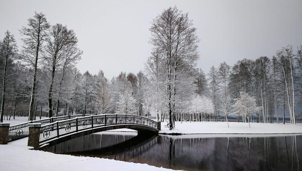 Žiemos SPA
